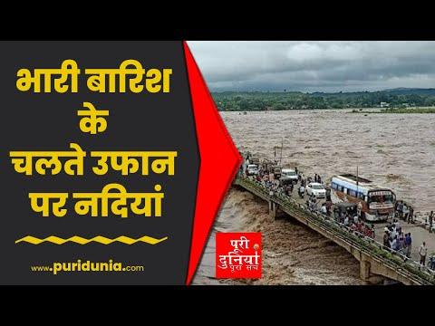 Uttarakhand | उफान पर नदियां, देखते ही देखते विशाल पेड़ नदी में समाया | Viral Video
