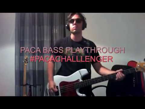 PACA - Bass Playthrough- Song By Edward Sanchez DRD