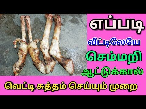 How To Clean Goat Leg | ஆட்டு கால் வெட்டி  கழுவி சுத்தம் செய்வது | Lamb Leg How to Clean in Home