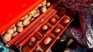 Πατατοσπορέας Potato Planter Κελίδης Βασίλειος