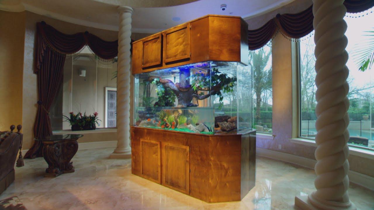 Dwight howard 39 s slithering slam dunk snake tank youtube for Cat proof fish tank