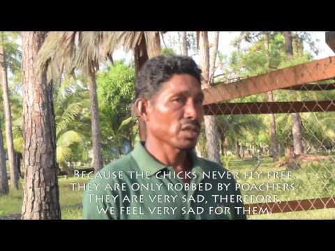 Santiago Lacuth Interview