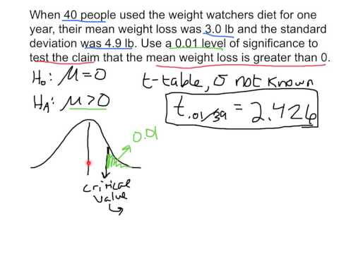 Hypothesis Test for Population Mean Example