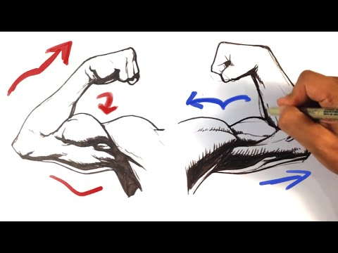 How To Draw Arms Simple