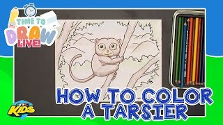 How to Color a Tarsier | Time to Draw LIVE
