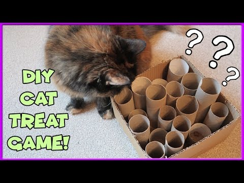 DIY Cat Game | Make Interactive Cat Tube Game! Recycled Cardboard Game For Cats!