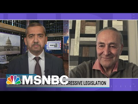 Sen. Schumer On Passing President Biden's Agenda With 50-50 Senate   Mehdi Hasan   MSNBC