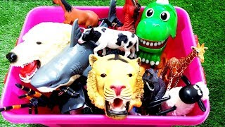 Learn Colors with Animals and Farm Surprise Toy for Kid Child Learn ★ Zoo Wild Animals