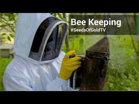 Bee Keeping - Seeds Of Gold TV Season 1 Episode 5 | 24 Sept 2015