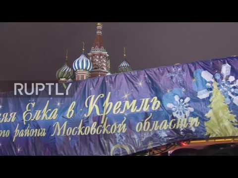 Russia: Kremlin's Christmas tree arrives in Moscow, courtesy of Father Frost