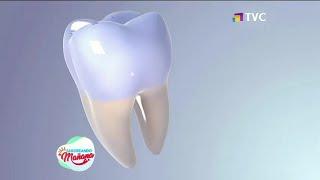 ¿Cuál es la importancia del esmalte dental?