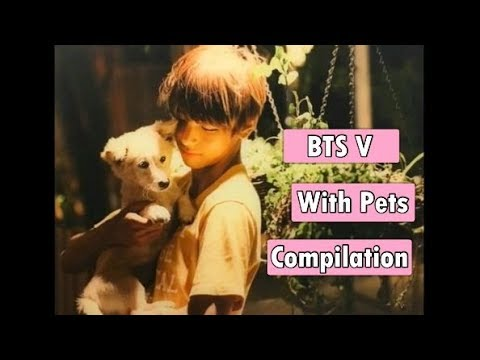 BTS V WITH PETS COMPILATION - YouTube