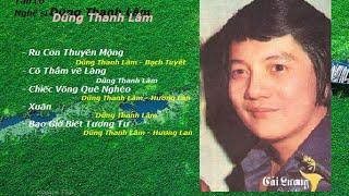 Nghệ sĩ Dũng Thanh Lâm - Tân cổ