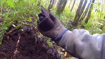 Mahtava kirves löytyi metsästä.