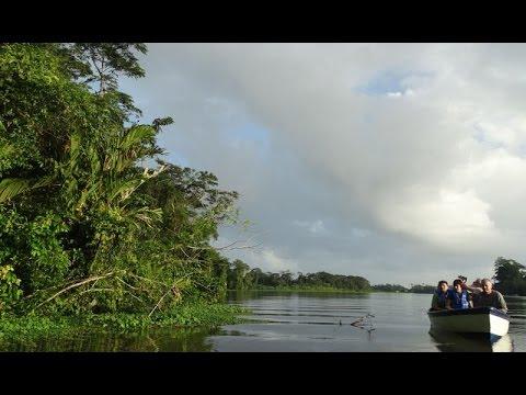 Costa Rica 2014 - 3 - Monteverde - Laguna Arenal - Tortuguero - Bosque Nuboso