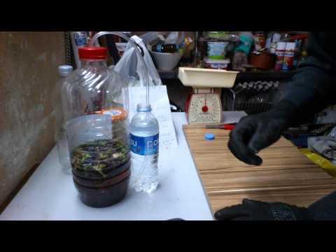 Kendin yap evde sıvı enzim gübre yapımı