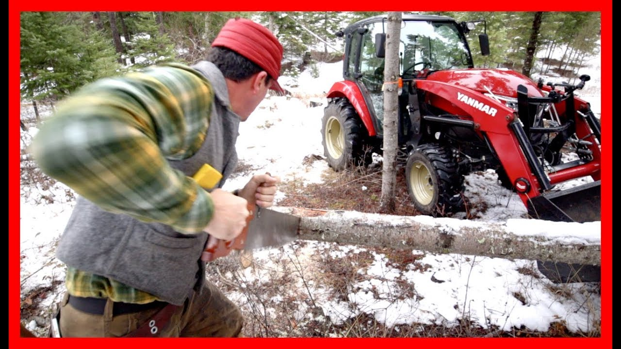 how-to-cut-firewood-the-old-fashioned-way