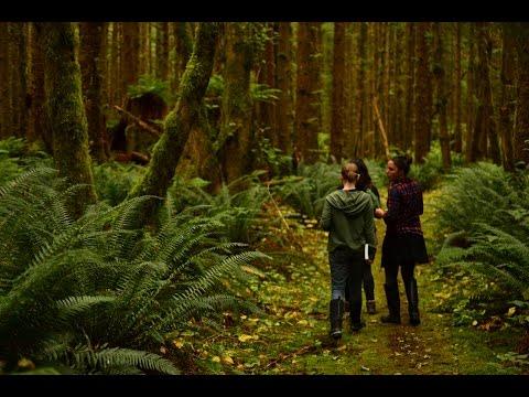 Explore Haida Gwaii