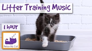 Litter Training Cat Music! Music to Help Cats During Toilet Training.