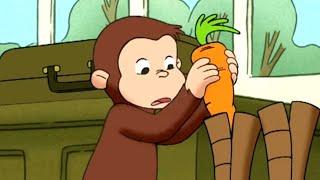 Jorge el Curioso en Español 🐵La Zanahoria Perfecta - 🐵Mono Jorge🐵Caricaturas para Niños