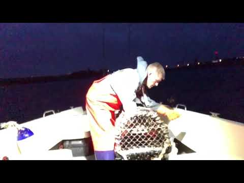 Lobster Night Fishing Trip In Guernsey UK