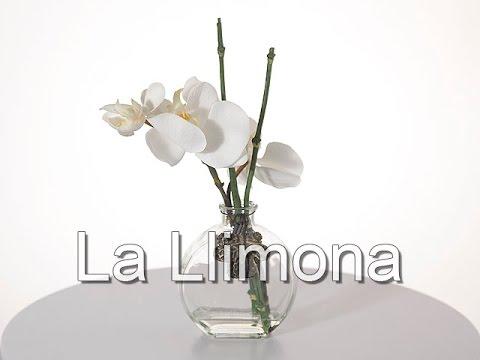 Arreglos Florales Arreglo Floral Orquideas Artificiales Blancas Con Jarrón La Llimona