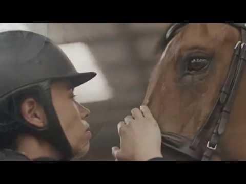 Hate Me || Equine Edit (Horse Music Video)