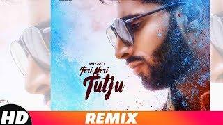 Teri Meri Tutju Remix Shivjot Mp3 Song Download
