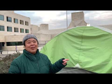王春艳:在中国大使馆成立访民中心 533
