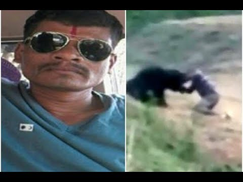A FOOLISH MAN IN INDIA RETURNING FROM A WEDDING TAKES A SELFIE WITH A WOUNDED BEAR AND IS MAULED