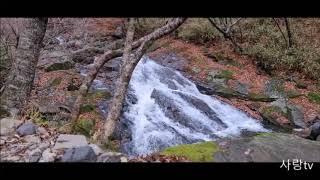 ASMR 지리산에서 계곡의 물소리와 새소리를 담아왔습니다. 마음이 복잡할때 조용히 생각을 정리하는 시간에 이 소리를 들으시면......!