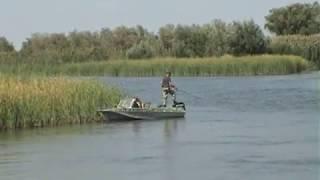 Ленивый сазан .  Астраханская рыбалка 14 09 19 г