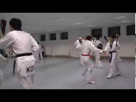 Lehrgang mit Koreanischer Jugend-Nationalmannschaft- Taekwondo