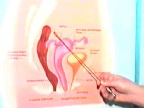 Оргазм внутри влагалища видео уважал