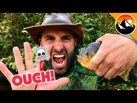 Download EATEN ALIVE - Human Hands vs. Piranha!