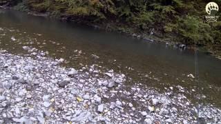 Автостопом на рыбалку в Карпаты 6 день...bogomaz05
