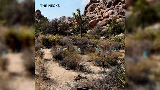 The Necks - Bloom