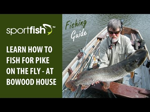 Fishing For Pike On The Fly At Bowood House