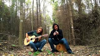 Woodnitza - Élan (Nightwish Cover Tin Whistle & Acoustic Guitar)
