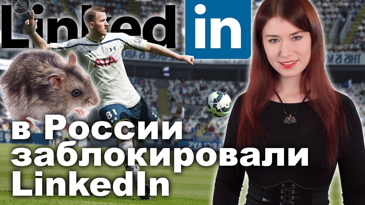 В России заблокировали LinkedIn