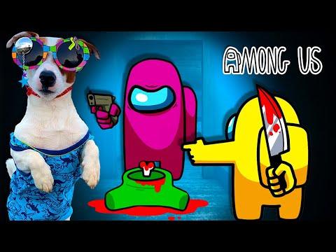 Смешные моменты в Амонг Ас 😱 AMONG US с Локи Бобо