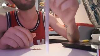 Repeat youtube video Tutorial #1 Joint a due cartine