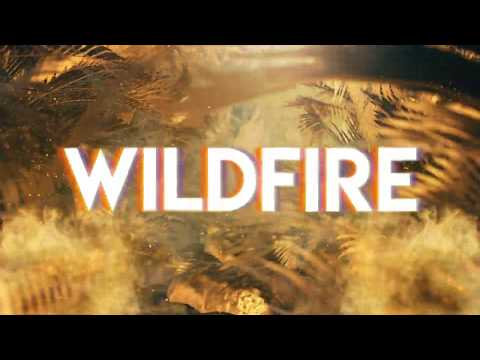 Leo Dynamic1 & Laura Leighe - Wildfire (Lyric Video)