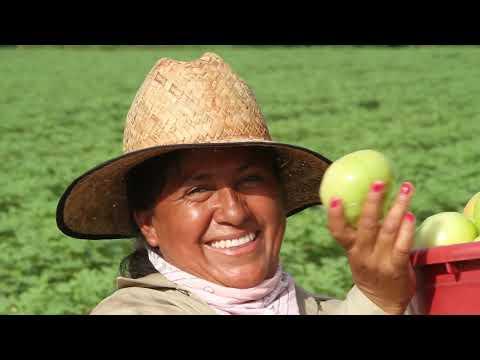 Nueva Película Explora La Intersección De La Comunidad Latina Y La Justicia Ambiental