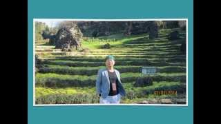 Arnold Hieu's Trip 2014 ( update 27/2/2014) Thumbnail