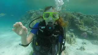 Дайвинг, подводный мир, diving, дайвинг в Египте
