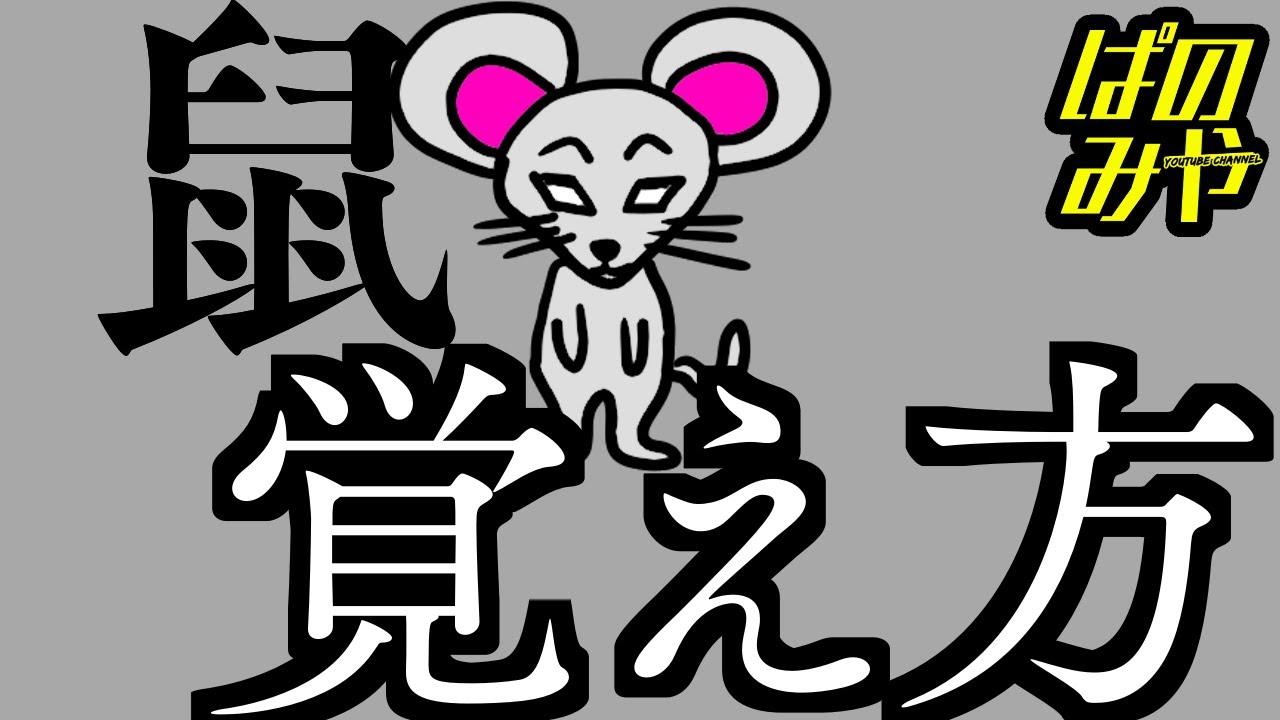 【秒で暗記】漢字「鼠(ねずみ)」の覚え方をキュウソネコカミのフラッシュバックにのせて