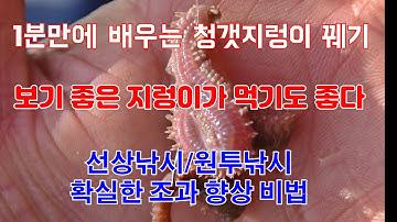 1분만에 배우는 청갯지렁이 꿰기 꿀팁! 선상낚시/원투낚시 확실한 조과 향상 비법 공개[디낚TV]