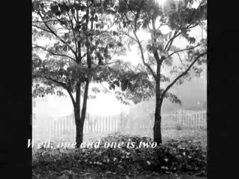 El Camino by Amos Lee WITH LYRICS