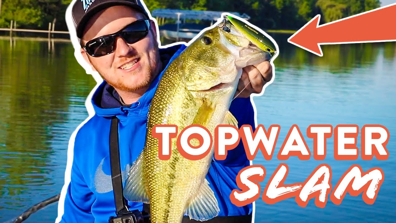 Catching Bass On 5 Different TOPWATER Lures! | Topwater Bass Fishing Tips